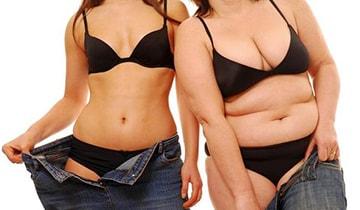 Можно ли похудеть если не есть мясо